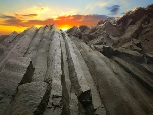 vata bazaltica